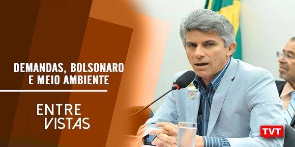 Demandas, Bolsonaro e Meio Ambiente